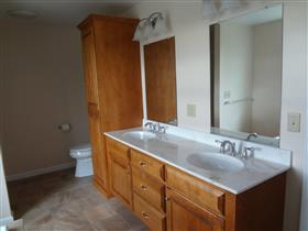 Double bowl vanity with linen closet: